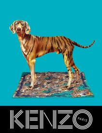 nouvelle-campagne-kenzo-lhiver-prochain-drole-L-No3yop